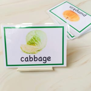 flashcard học từ vựng tiếng Anh