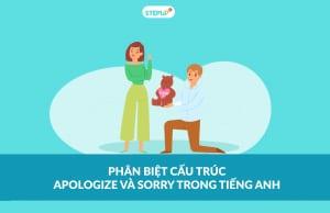 cấu trúc apologize